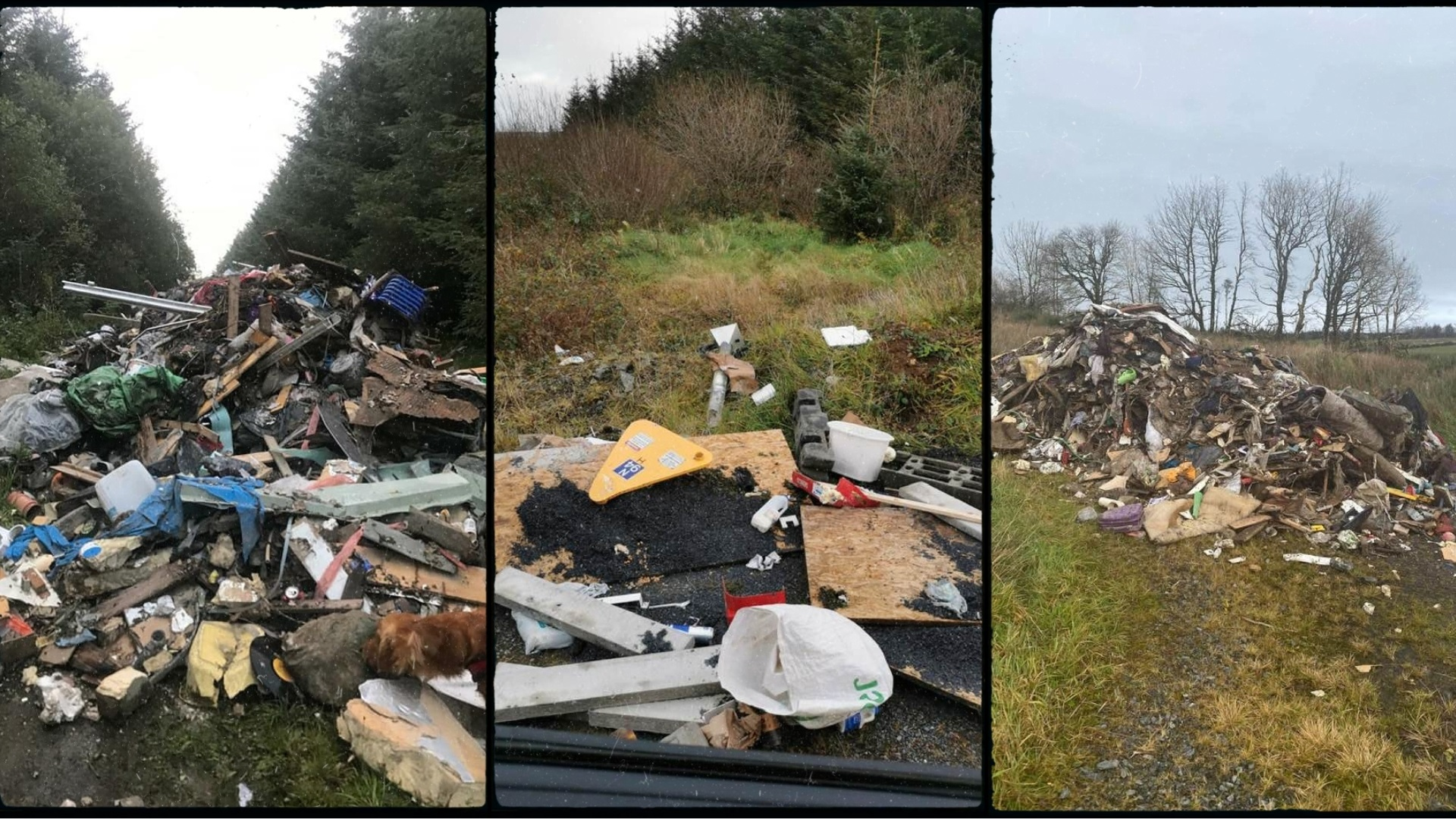 Illegal dumping - Haughey continues to press authorities on illegal dumping - Newtownhamilton news