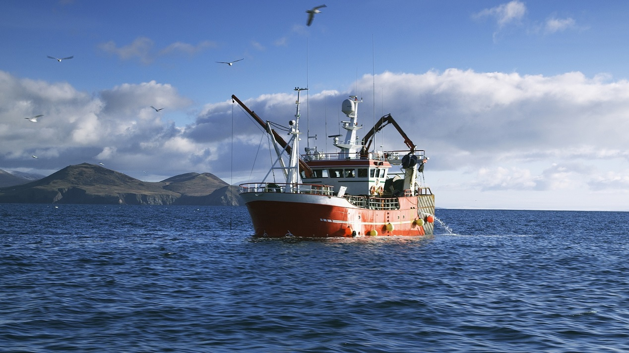 Poots seeks fair share of fishing quotas for NI fishermen - Newry Times - Newry News