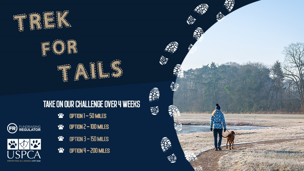 USPCA Launches Trek for Tails Challenge - Whats On Newry - Newry Times