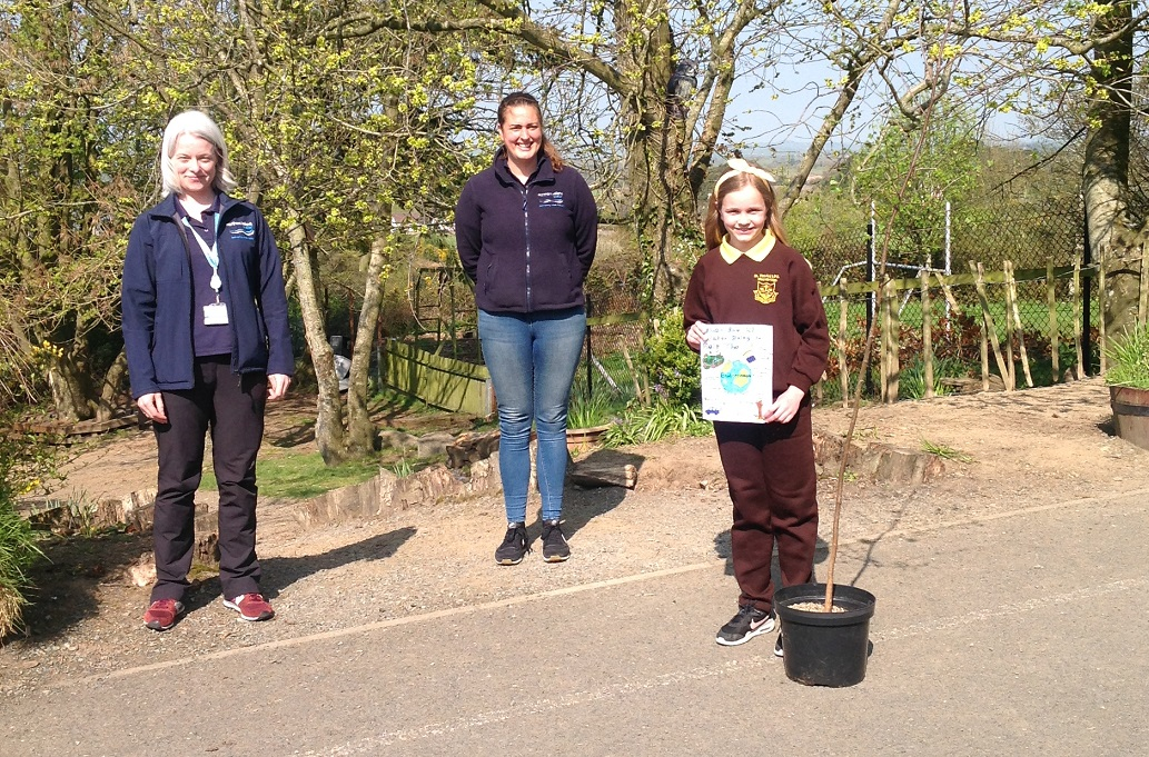 Young Environmental Champion at St Patrick's PS, Mayobridge - Newry Times - News in Newry