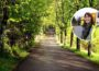 £2.5 million investment in Northern Ireland greenways announced - Newry Times - newry news today