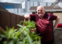 """Loneliness is """"New Normal"""" for Many Older People - Newry Times - newry news co down"""