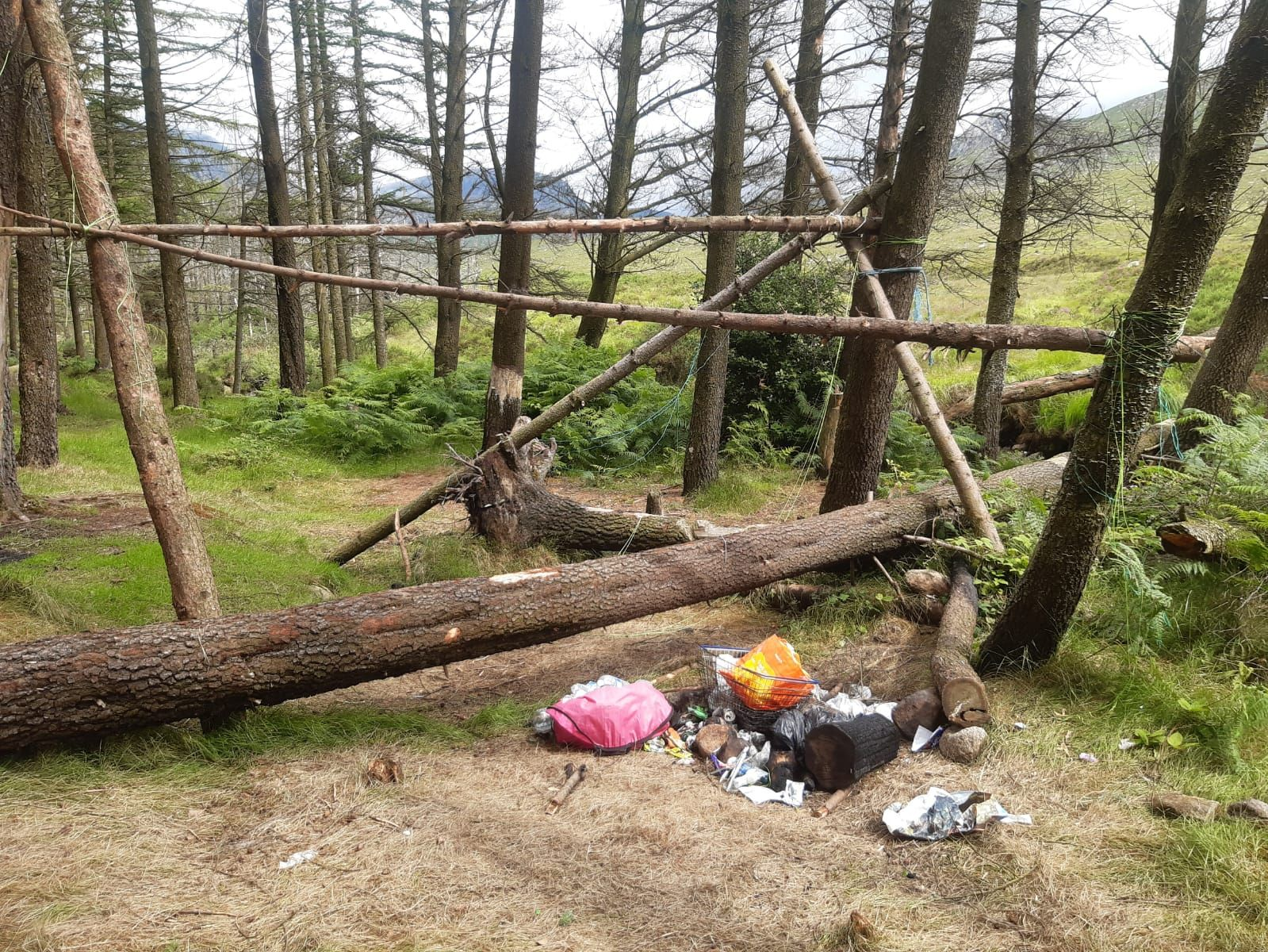 'Take your litter home', urges Walk NI - Newry Times - newry litter