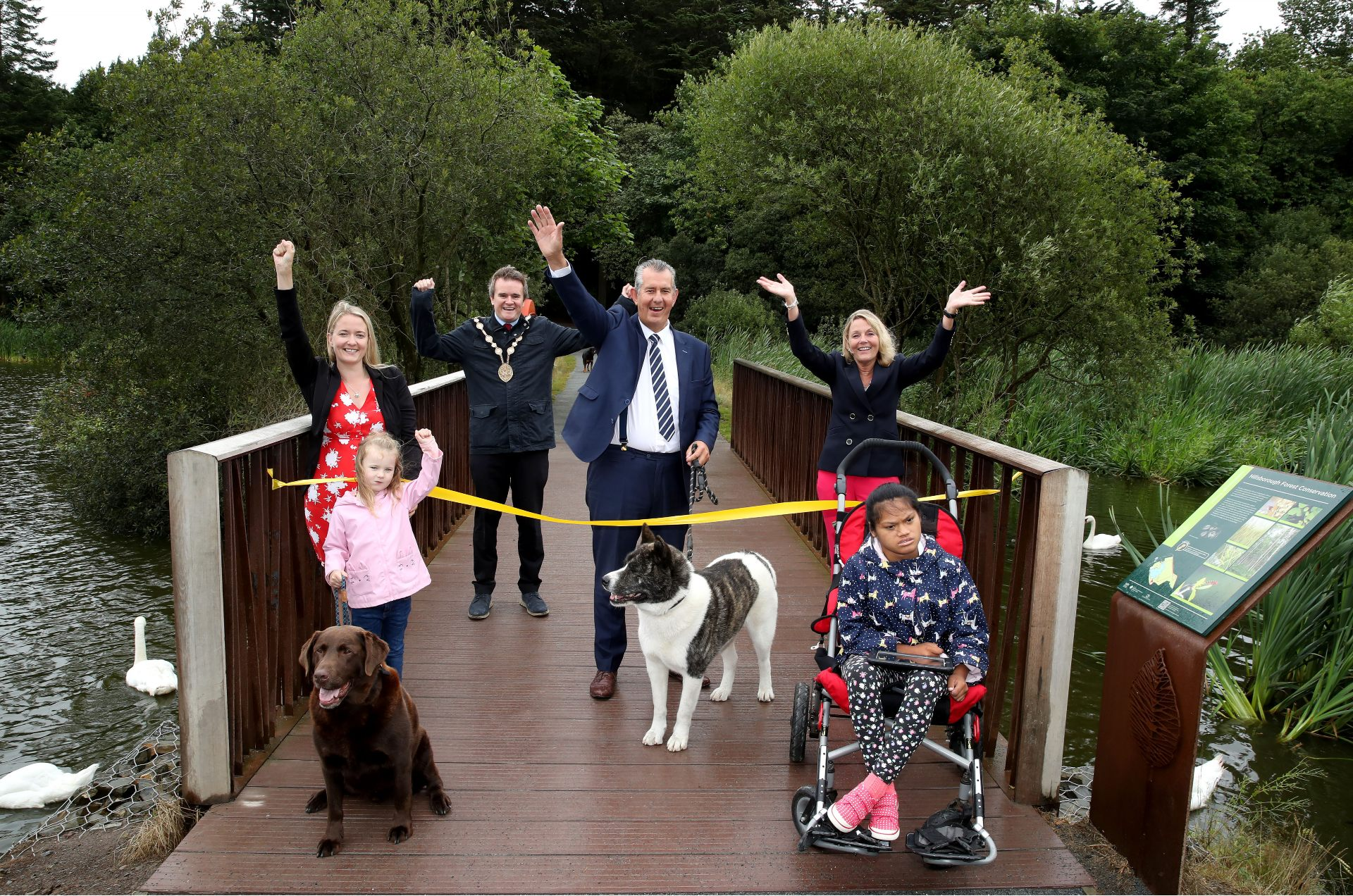 Hillsborough Forest visitors to benefit from £2m investment - Newry Times - newry news