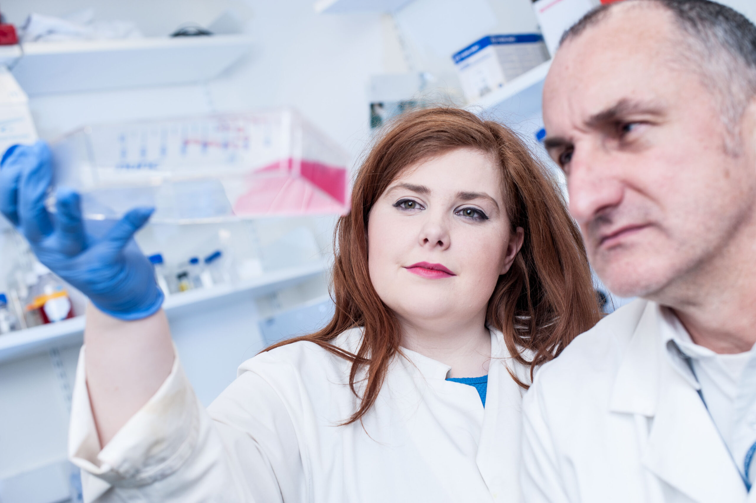 Ulster University rises to number 2 in UK PhD rankings - Newry Times - newry news today - Biomedical science PhD