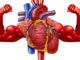 £10,000 grant available for Healthy Heart projects - Newry Times - newry newspaper