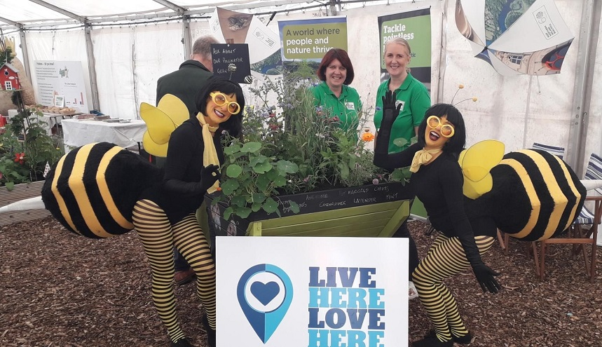 New £700,000 Pollinator Grants Scheme Announced - Newry Times - newry newspapers